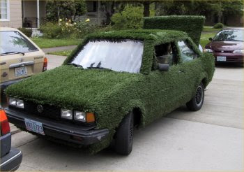 15 Cool Grass Covered Cars (16) 13