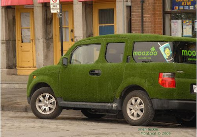 15 Cool Grass Covered Cars (16) 8
