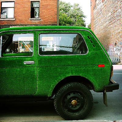 15 Cool Grass Covered Cars (16) 2