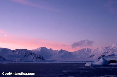 Cool Antarctica (5)  3