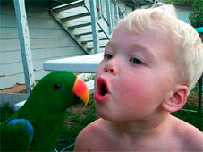 Kid & parrot