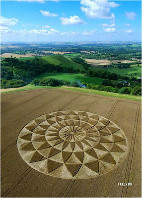 Beautiful art in the fields (10) 1