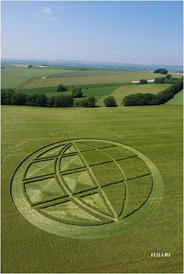 Beautiful art in the fields (10) 7
