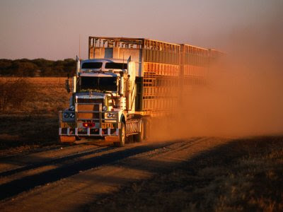 Road Train (20) 16