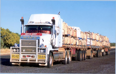 Road Train (20) 12