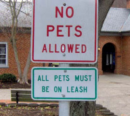 Funny Dog Signs (14) 8