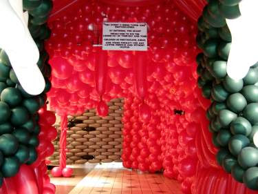 House made of balloon.
