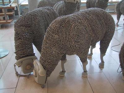 Phone Lambs (4) 2
