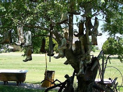 Shoe Trees (36) 16