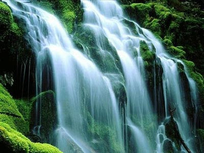 Stunning Beauty Of Waterfalls (11) 1