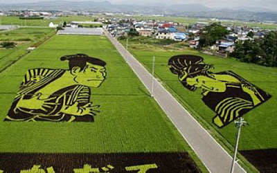 Beautiful Rice Field Art 1