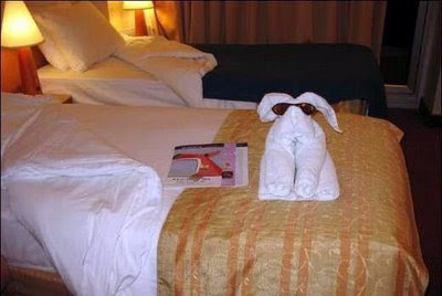 Cute Folded Towel Animals (7) 1