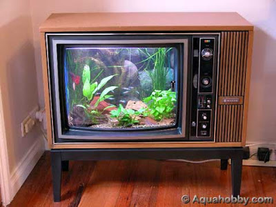 wooden TV Aquarium