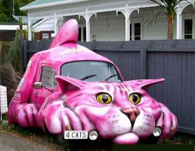 Cat Cars (3) 1