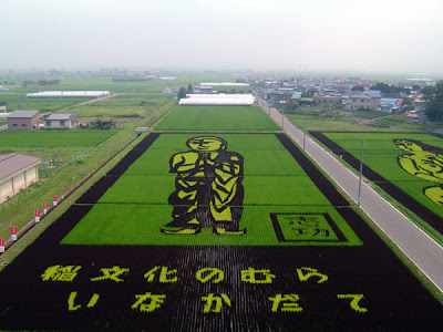 Beautiful Rice Paddy Art (4) 2
