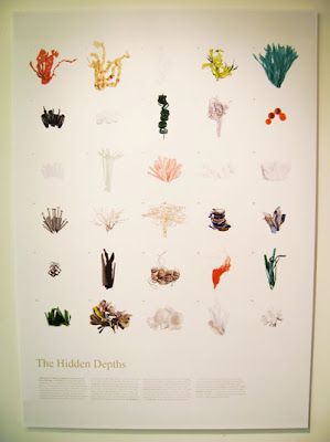 hidden depths poster (2) 1