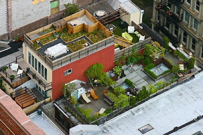 Roof Tops Of Rich People (6) 2