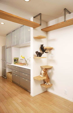 Creative Cat Houses and Cool Cat Bed Designs (21) 17
