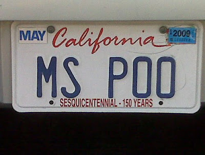 16 Cool and Clever License Plates (16) 5
