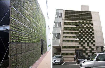 Parabienta Living Wall