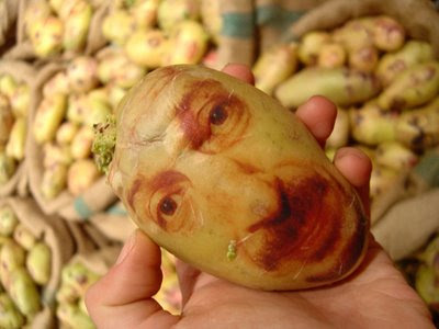 Potato Portraits (2) 1