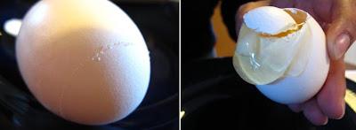 Eggshell Planter (13) 2