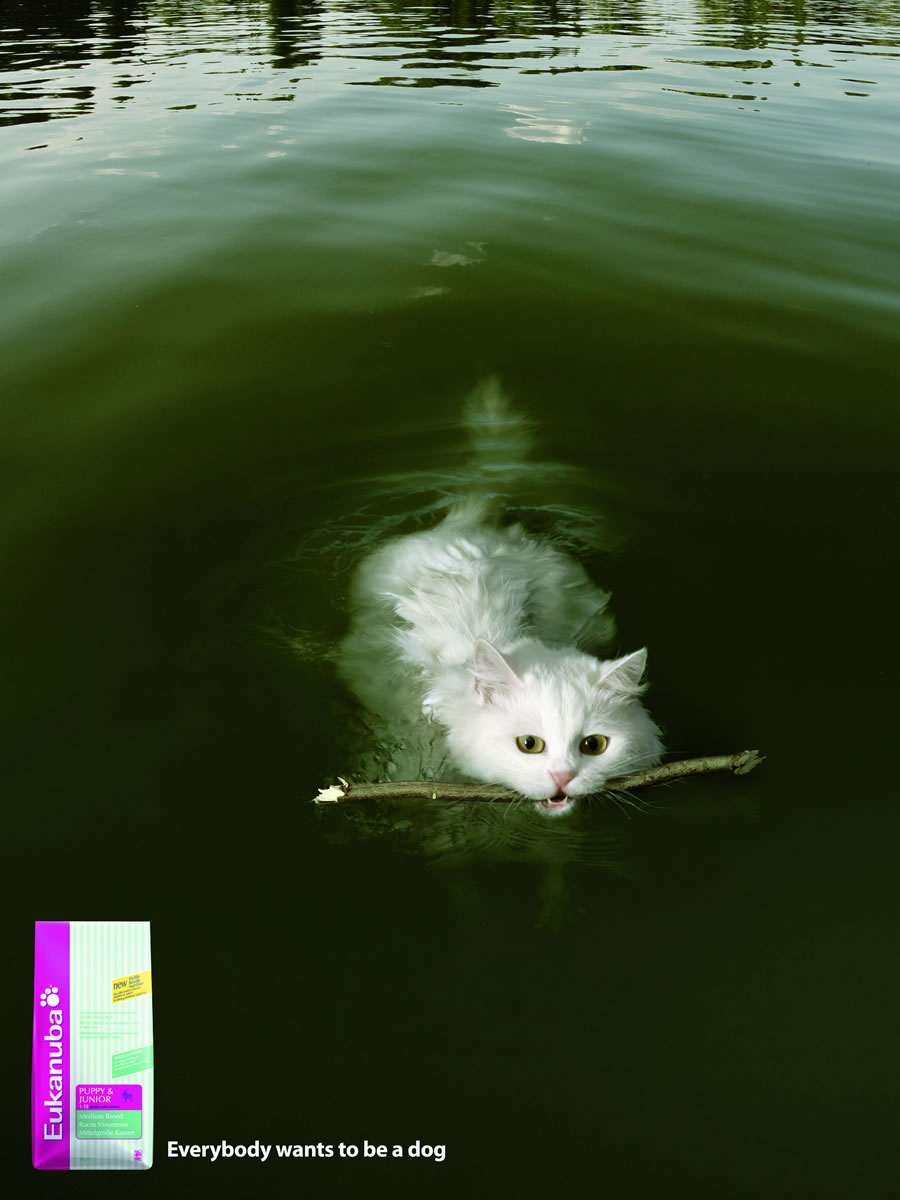 Pet-Dog-Foods-Eukanuba-Advertisement4