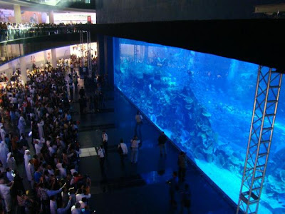 Cool Aquariums and Unusual Fish Tanks Designs (50) 3