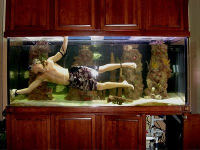 Cool Aquariums and Unusual Fish Tanks Designs (50) 40
