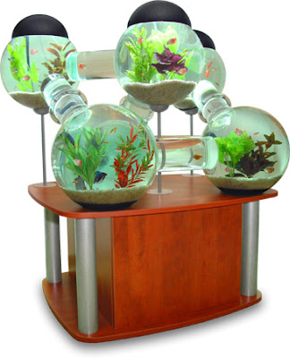 Cool Aquariums and Unusual Fish Tanks Designs (50) 21