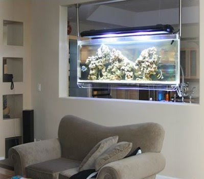 Cool Aquariums and Unusual Fish Tanks Designs (50) 29