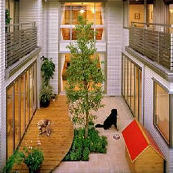 Dog Friendly Home Designs.