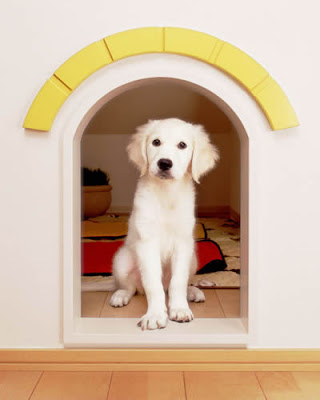 Dog Friendly Home Designs(18) 4