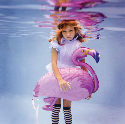 Underwater Photography (21) 12