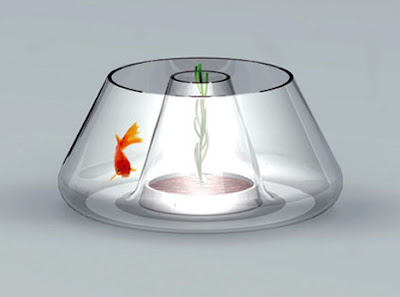 14 Creative and Cool Fishbowl Designs (14) 13