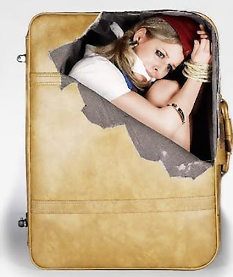 Creative Suitcase Stickers (3) 2