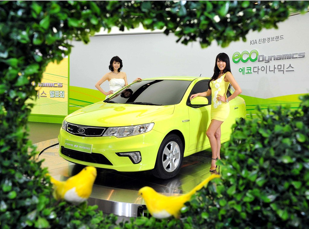 2011 Ford Fiesta With Models