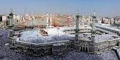 Imagem do dia 12.11.2010