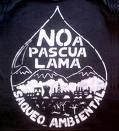 Por el No  al Proyecto minero del Pascua Lama