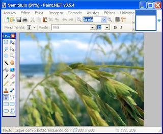 Grátis o Paint-net e criar imagens