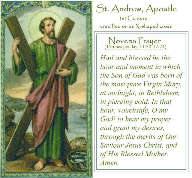 photo regarding St Andrew Novena Printable titled Saint Andrew The Apostle Prayers Prices of the Working day
