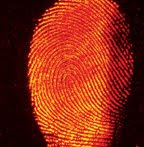 Batman fingerprints