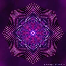 Estrela Violeta