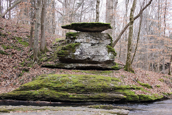 Natural Wonder on the Natchez Trace