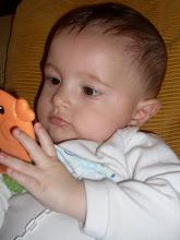 ENZO, meu bebê maravilhoso.