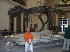 At The Field Museum