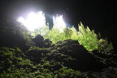 Cavernas de Camuy