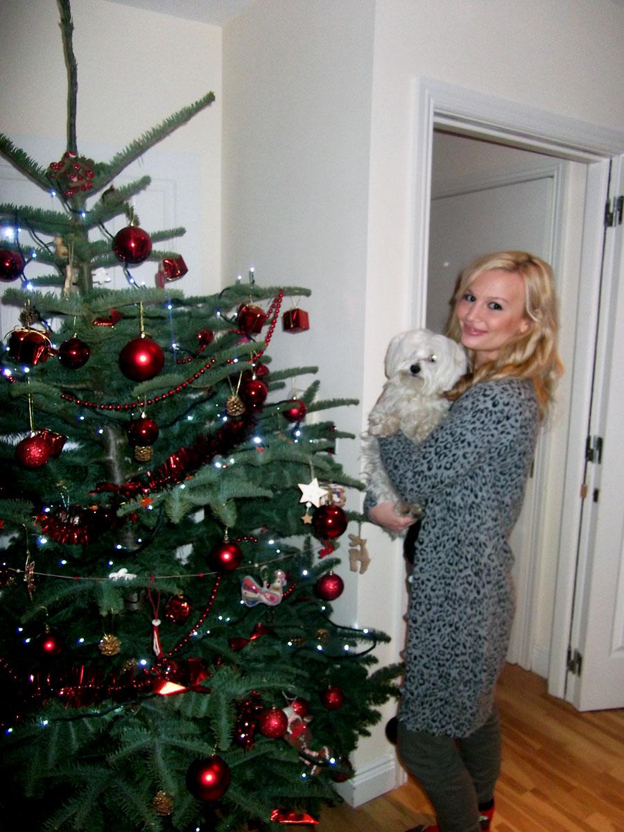 Anna Saccone Christmas Tree