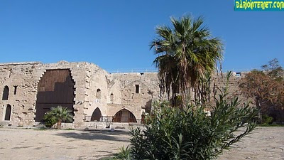 dario margeli kyrenia cyprus