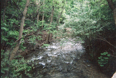 City Creek Memory Grove SLC, A Peoples Picture